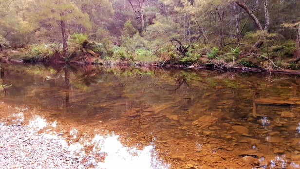 creek-1