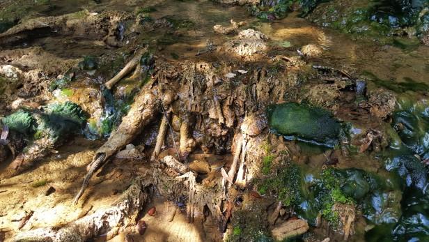 croesus-cave-4