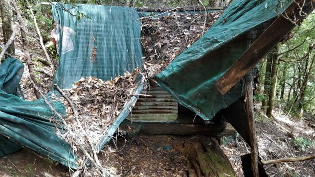 Arthur River Camp Hut 1