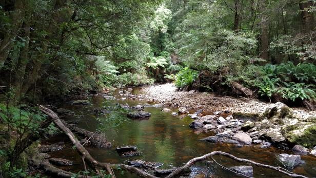Eastons Creek 1