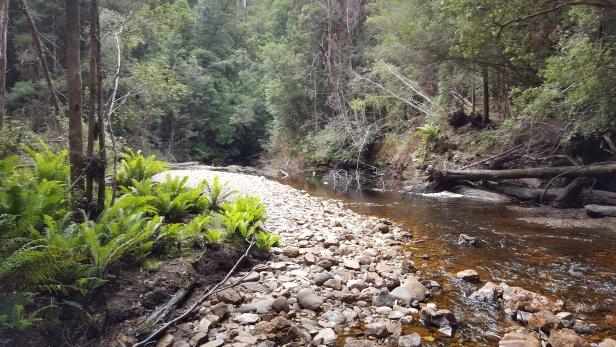 Eastons Creek