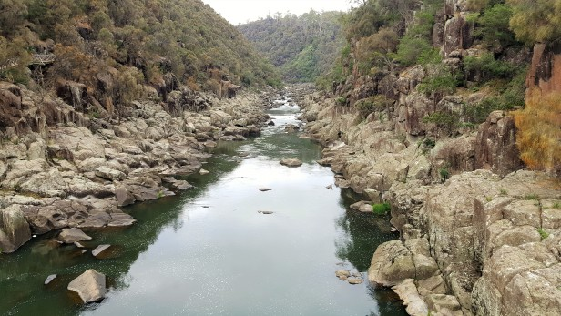 Cataract Gorge 1